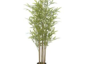 Διακοσμητικό Φυτό Σε Γλάστρα 3-85-783-0035 20X20X120cm Green Inart Πλαστικό